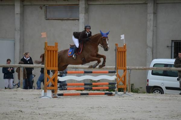centre equestre ardon